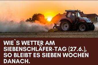 Traktor in Abendsonne