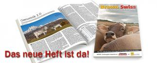 Das neue Heft von Brown Swiss International
